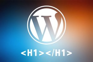 Собственный H1 для Wordpress